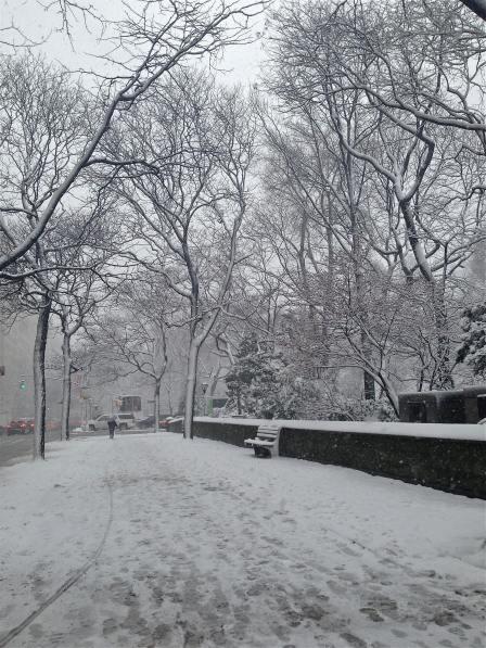 {snowy Fifth Avenue}