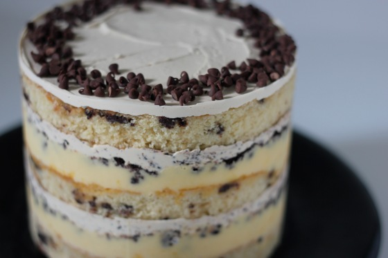 chocolatechipcake10
